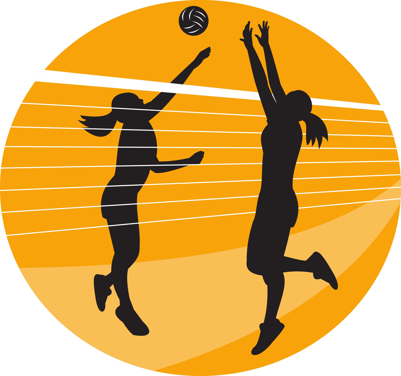 Прикол, открытки тренеру по волейболу