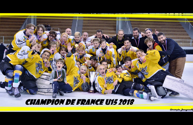U15 is a ice_hockey team. They are using SportEasy, the best web and mobile application to manage any sports team (football, soccer, rugby, basketball, baseball, hockey, volleyball...). Coaches and managers can organize the games and practices or send group messages to their players. Players have convenient access to their schedule or statistics. SportEasy is free and available on the web, iPhone and Android.