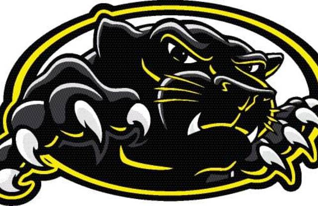 HC Black Cats is a ice_hockey team. They are using SportEasy, the best web and mobile app to manage any sports team (football, soccer, rugby, basketball, baseball, hockey, volleyball...). Coaches and managers can organize the games and practices or send group messages to their players. Players have convenient access to their schedule or statistics. SportEasy is free and available online, iPhone and Android.